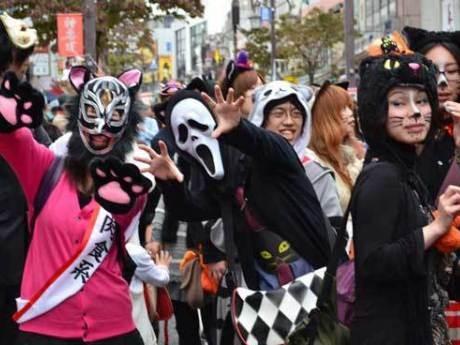 神楽坂通りを会場に「化け猫パレード」が開催される(画像=昨年の様子)
