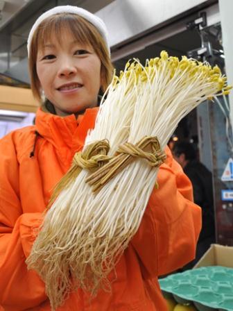 日本一長い「大鰐温泉もやし」は一般的なモヤシよりビタミンやミネラル分が豊富に含まれている