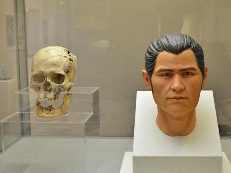 出土した人骨を元に再現された縄文人の顔