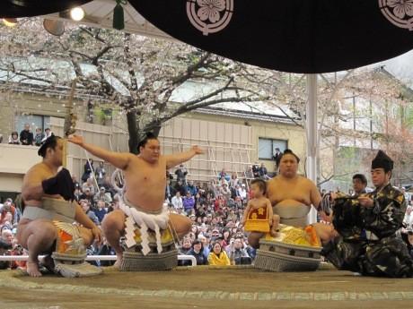 靖国神社相撲場で恒例の奉納大相撲が開催される(画像=過去開催時の様子)