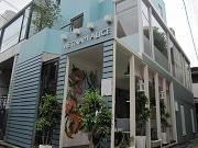 神楽坂にベトナム料理店「ヴェトナムアリス」 ペット同伴可テラス席も