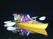 ナイトカヤックを楽しむカップル。夜の海の中では神秘的な生物の動きが見れる。