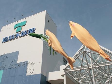 鳥羽水族館のエントランスに、「ジュゴンのぼり」