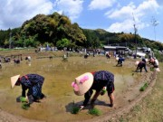 丸い形の田んぼ全国に3カ所、多気町「長谷の車田」お田植え祭-稲作文化継承