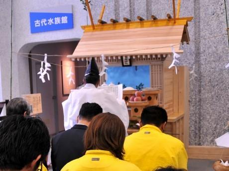 「賢島神社」の境内は水族館-志摩マリンランドで学業・受験成就祈願