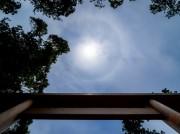 午年午月午日午刻に伊勢神宮外宮で月次祭-神宮の杜の上空で太陽に輪