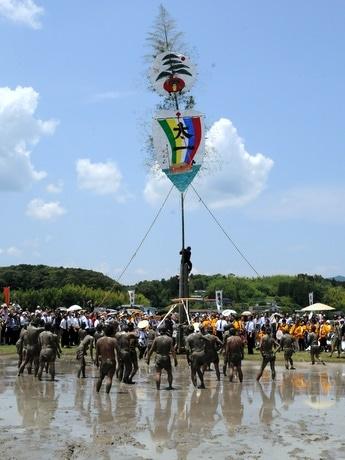 「日本三大御田植祭」の一つ、伊勢神宮別宮「伊雑宮」の神田で