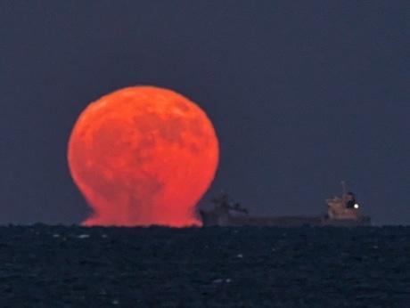 志摩の水平線から「だる満月」 11月には珍しい自然現象(写真提供=向井正明さん)