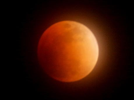 伊勢神宮宇治橋大鳥居正面から「赤い満月」 皆既月食