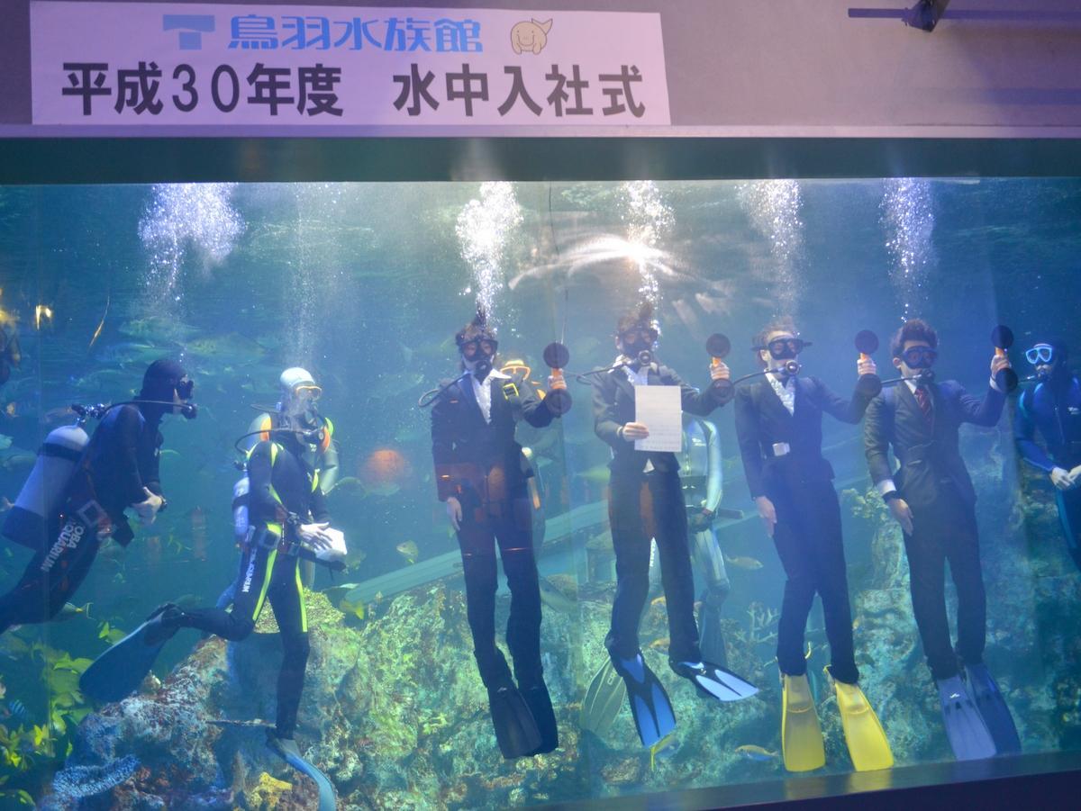 鳥羽水族館の入社式はナポレオンフィッシュたちが泳ぐ水槽の中