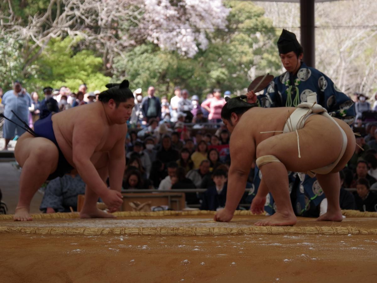 伊勢神宮奉納大相撲 優勝は白鵬 志摩市出身の十両・志摩ノ海も初白星
