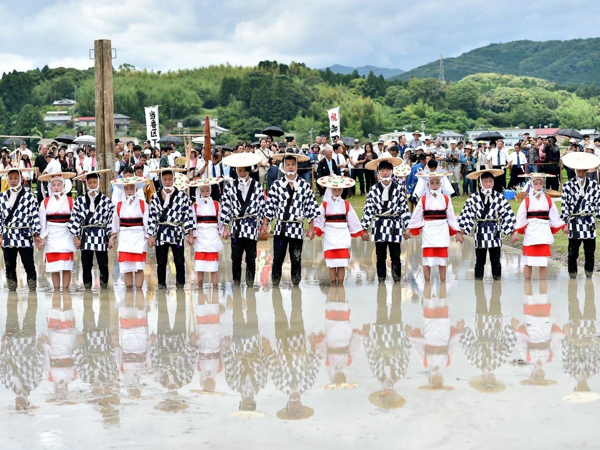 志摩市の伊勢神宮「伊雑宮」でお田植祭 7年振りの「岩戸開き」