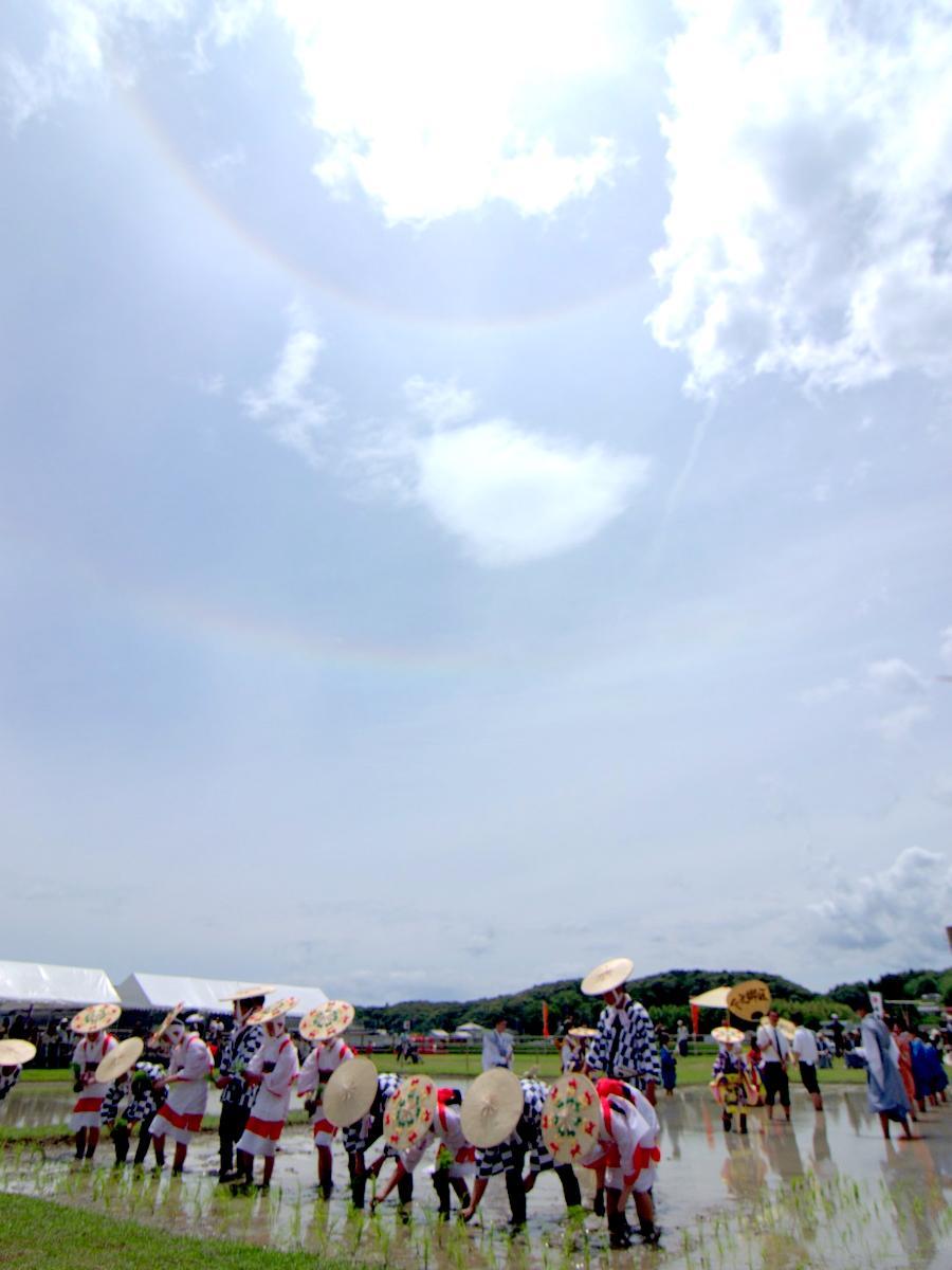 天照大御神祭る伊勢神宮「伊雑宮」のお田植祭最中に虹色の光(撮影=岩咲滋雨)
