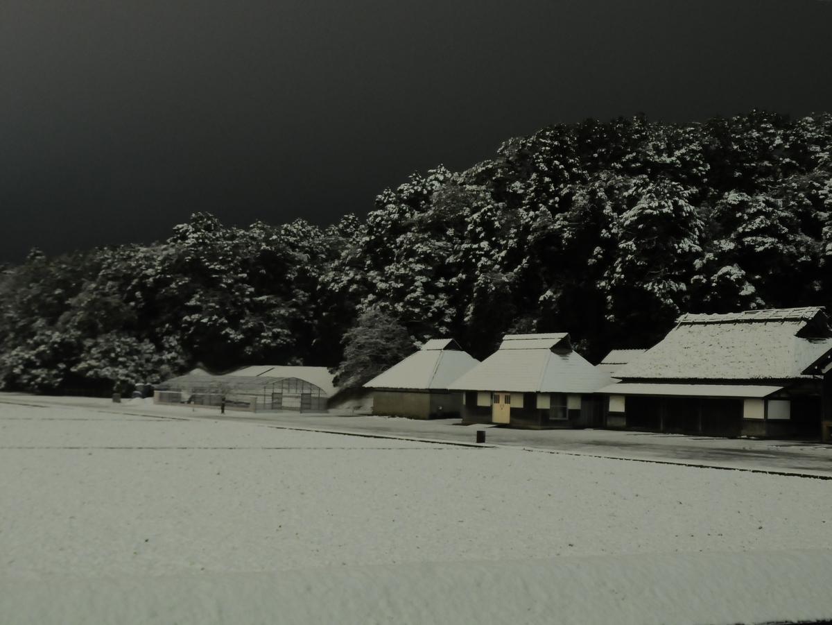 「いせ経」2018年上半期PVランキング1位は「伊勢に15センチの積雪」
