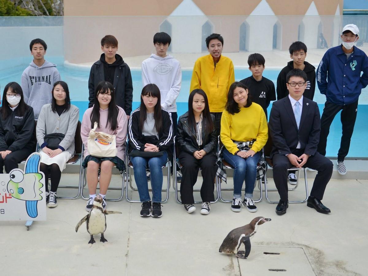 賢島の通信制代々木高校の入学式にフンボルトペンギン2羽が乱入