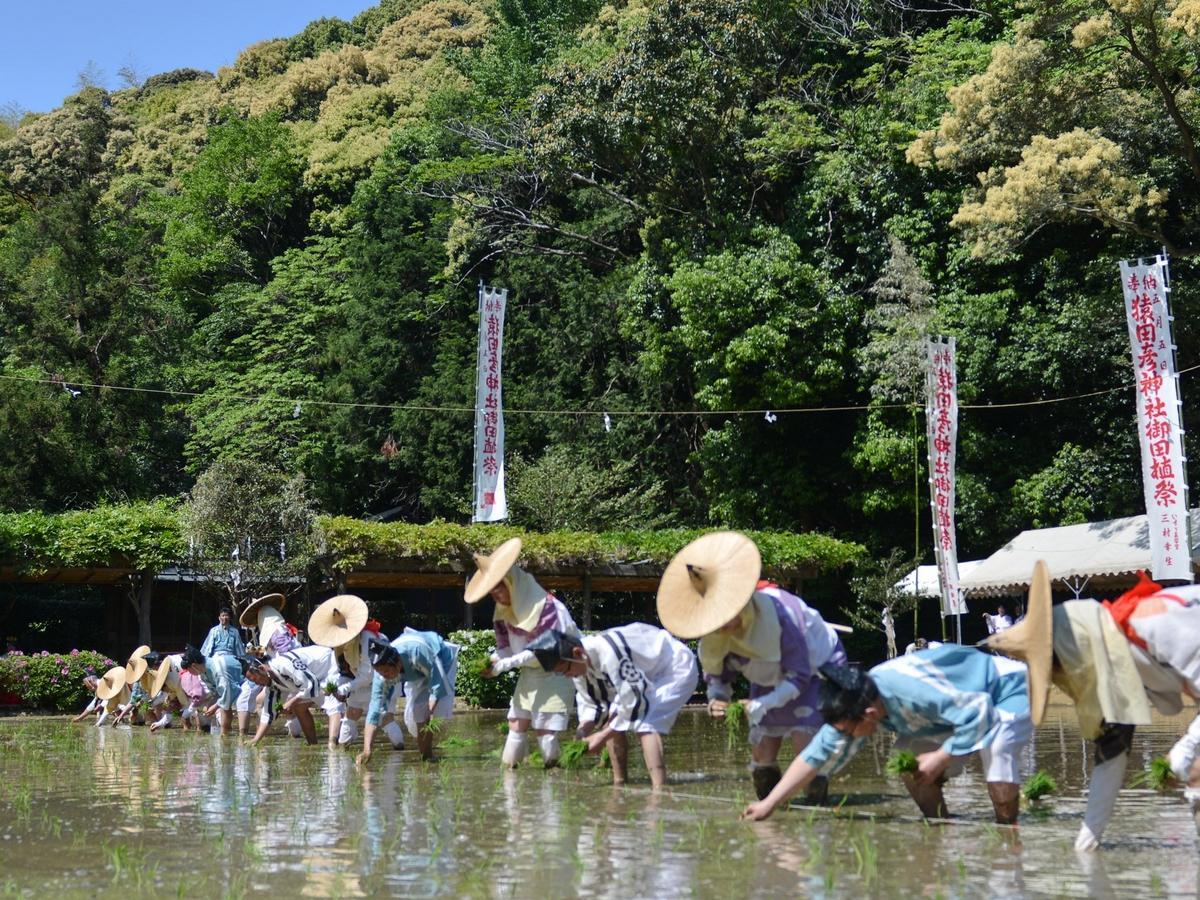 伊勢・猿田彦神社でお田植え祭  桃山時代の装束、男は侍烏帽子、女は市女笠で