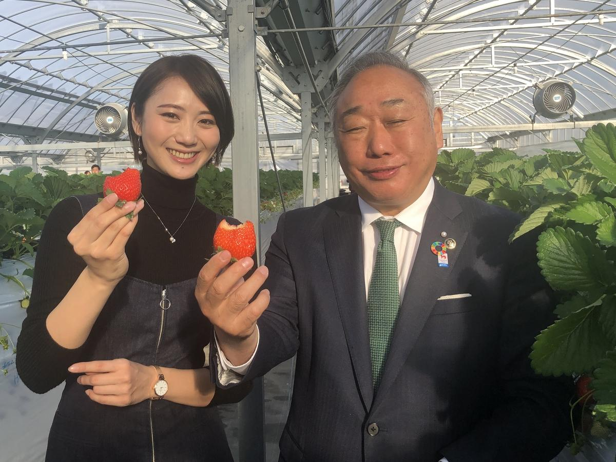 志摩市で高級イチゴ「かおり野」「レッドパール」90分食べ放題 JA伊勢