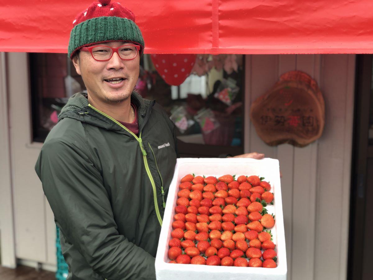 「伊勢苺園」直売所開設へ 栄養価コンテスト最優秀賞受賞のイチゴを販売