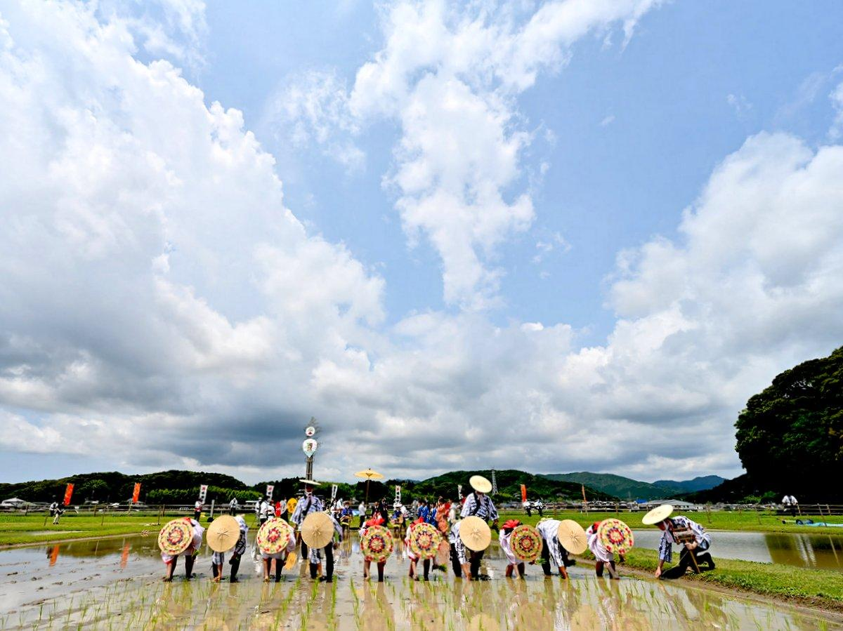 志摩市の伊勢神宮・伊雑宮で「御田植祭」 神事終了すると大量の恵みの雨(撮影=加藤直人)