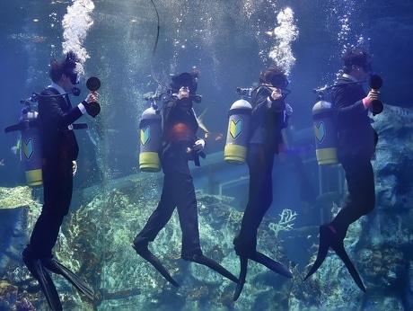 伊勢志摩経済新聞鳥羽水族館水中入社式の様子