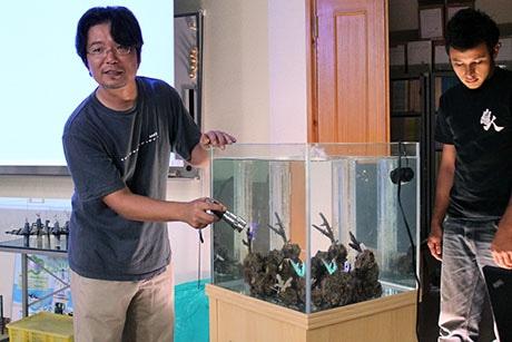 小林さんが紫外線を使ってサンゴの授業を再現した