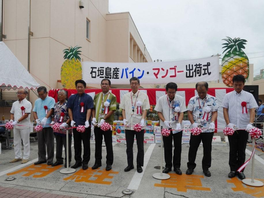 日本郵便(株)八重山郵便局で行われたパイン・マンゴー出荷式では、関係者がテープカットを行った。
