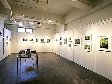 「森と水の石垣島」の写真38枚が展示されている