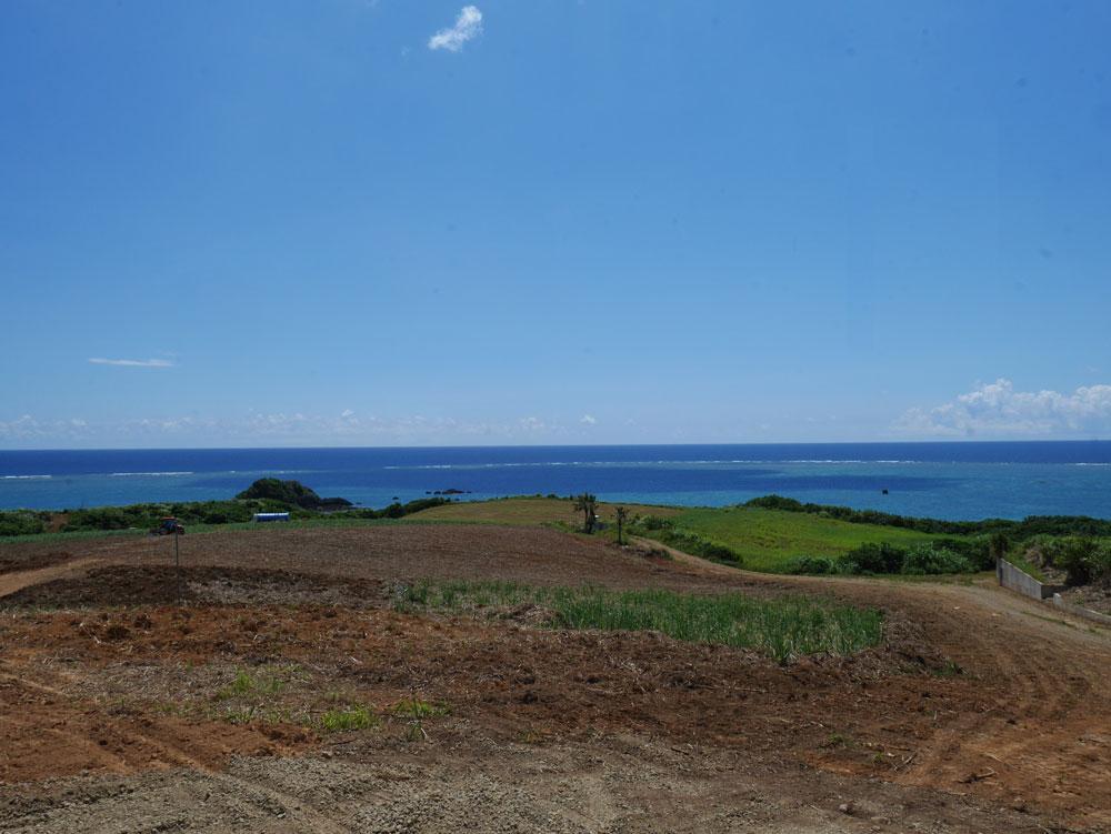 広大なヒマワリ畑になる予定の「のばれ岬」の土地