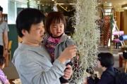 板橋区立熱帯環境植物館で「五感で感じる植物展」 ミラクルフルーツの試食体験も