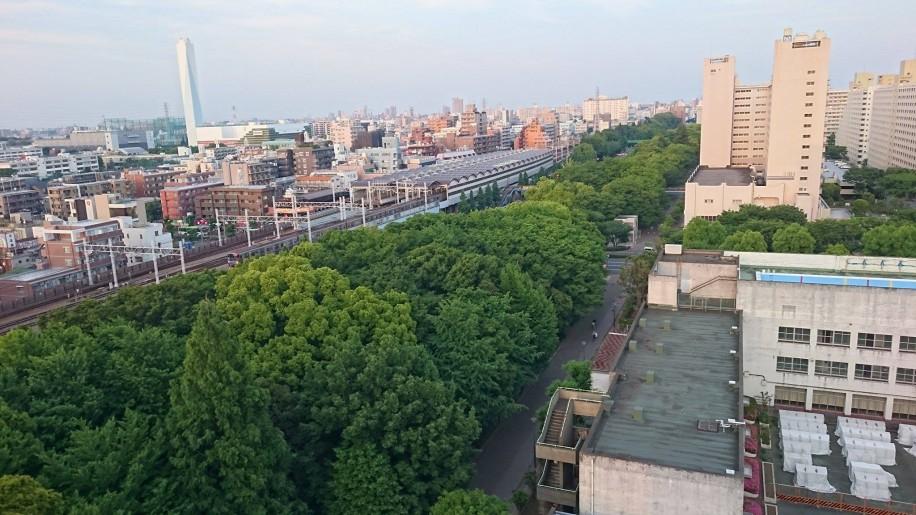 高島平の歴史とともに成長してきた緑地帯
