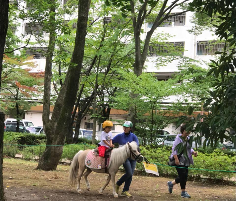 団地の下でポニー乗馬体験を楽しめる貴重な機会となった
