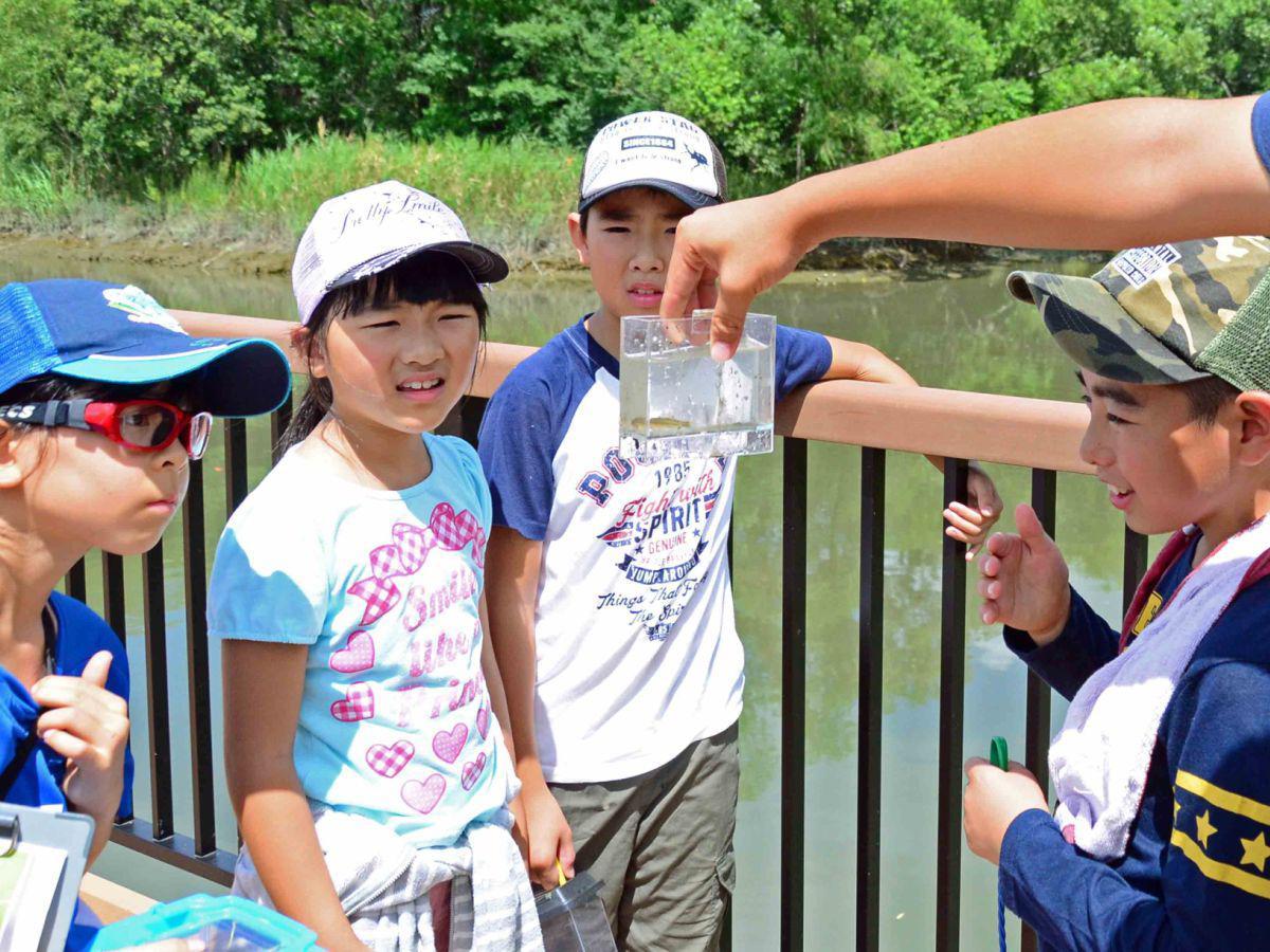荒川生物生態園で開かれたエコスクール