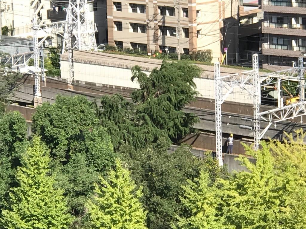 都営 新宿 線 遅延 証明