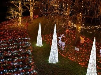 トプコン板橋本社でXマスイルミネーション点灯 ぬくもりと感謝で地域を照らす