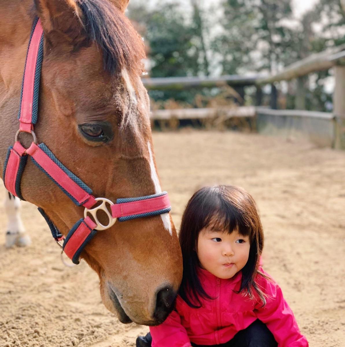 馬のいる、南相馬の日常――馬と地元の少女