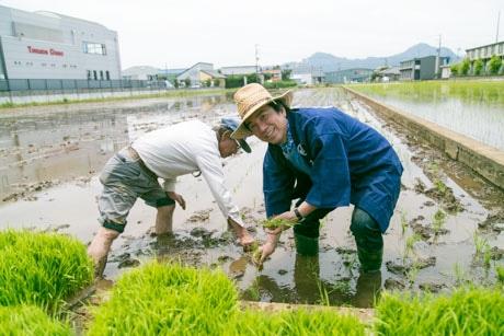 石井さんの指導を受けながら田植え作業に励む布施さん