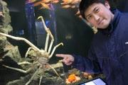 下田海中水族館に「白い」タカアシガニ 日本初の2匹同時展示