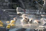 伊豆シャボテン公園でカピバラの節分イベント 外の「オニ」がオニユズ風呂に