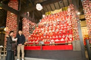 稲取で「雛のつるし飾りまつり」始まる 今年は「ひな壇日本一」狙う