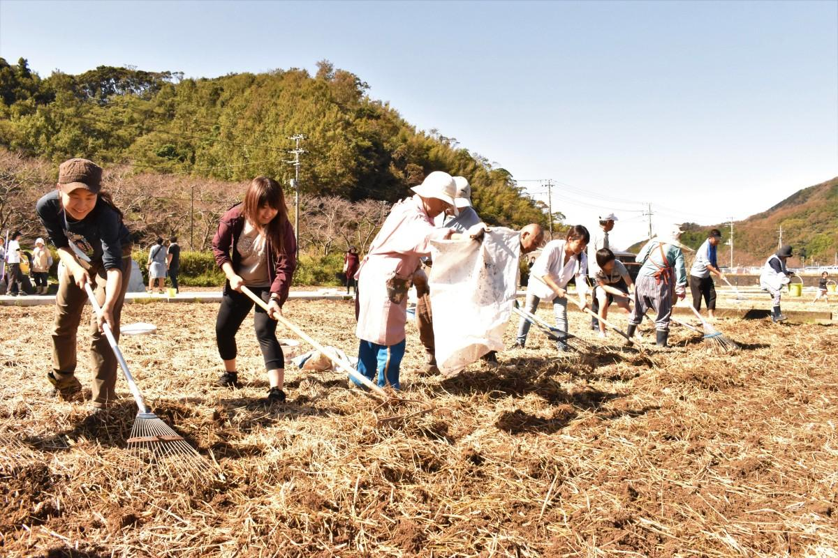 満開の花畑を心待ちにしながら種をまく参加者たち