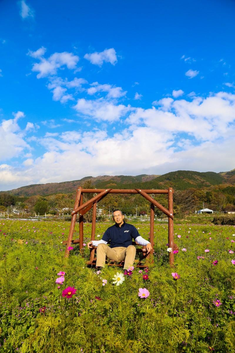 見ごろを迎えるコスモス畑と園内のブランコに乗る井口さん