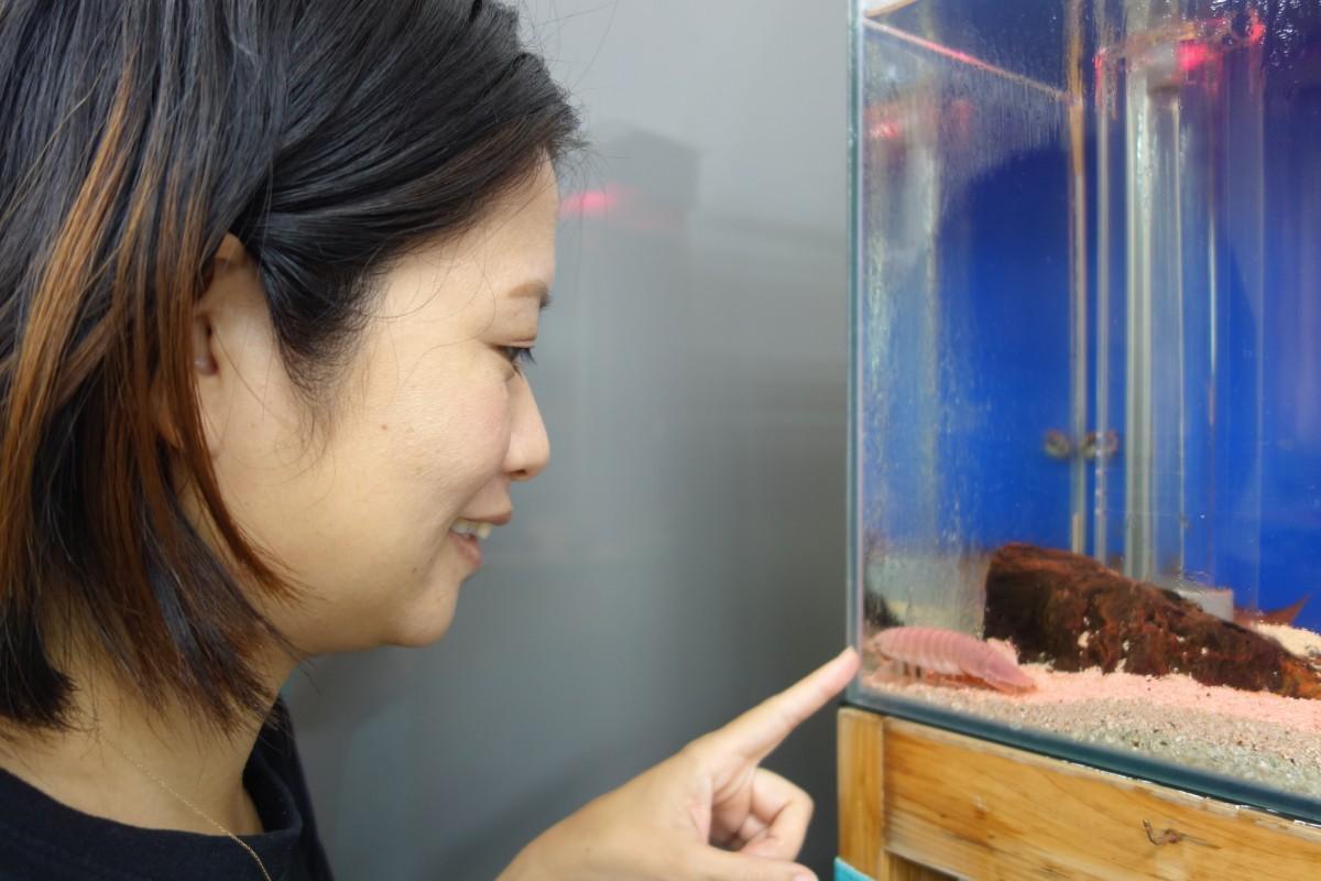 「キモかわいい」とオオグソクムシを可愛がる青山さん