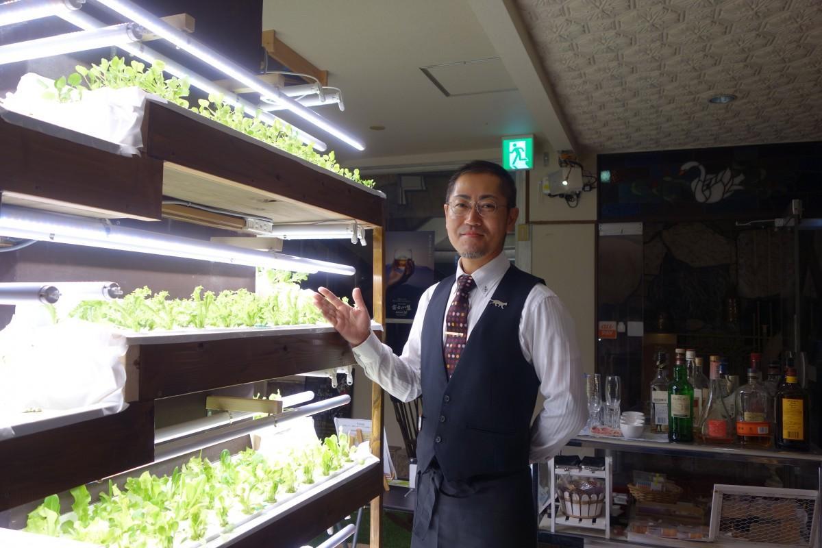 店内で水耕栽培されている野菜と池田さん