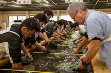 土肥金山で砂金採り大会 全国から「砂金採り王者」競う