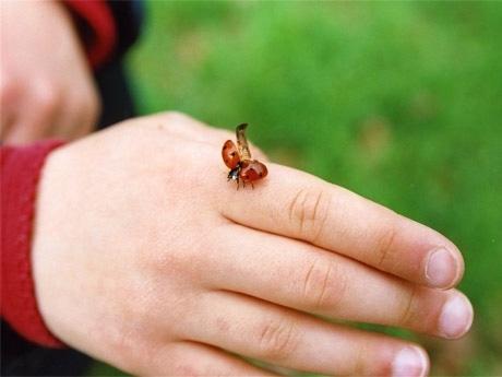 写真家・村尾香織さんの作品には、季節の中で子どもが見せるこんな愛らしいしぐさをとらえたものも