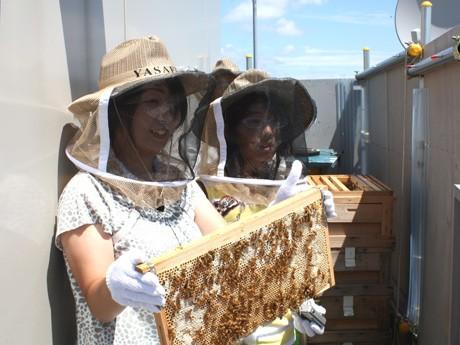 丘ばちプロジェクトで飼育するミツバチの巣枠を手にする「丘ばち体験教室」参加者