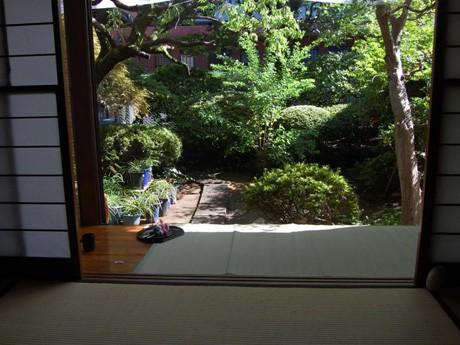 庭に咲く四季の花も楽しめる「和室スタジオ 天野家」縁側からの眺め