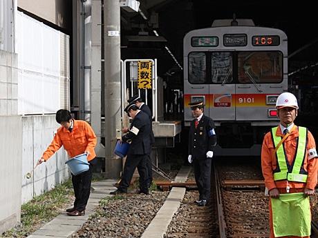 東急大井町線自由が丘駅踏切付近に「キカラシ」の種をまいた。来春こそ満開の花が見られるだろうか