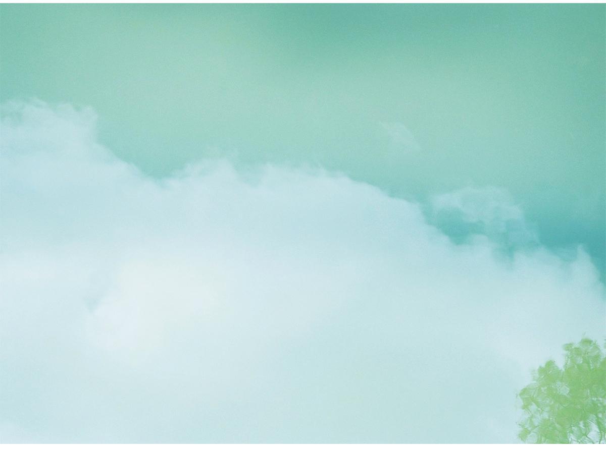 写真家・菊地和歌子さんの個展「潜る」作品から