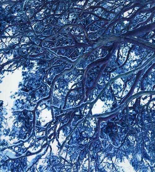 フォトグラファー・藤田はるかさんの写真展「winter」の作品から